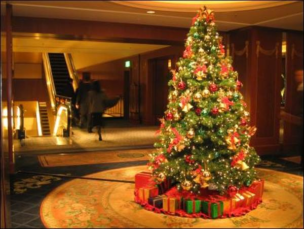 Where Did Christmas Trees Originate.Where Did Christmas Tree Tradition Begin Made In Atlantis
