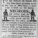 American History: Slave Sale Notice