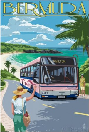 Catch the Pink Bus on Coastline Bermuda