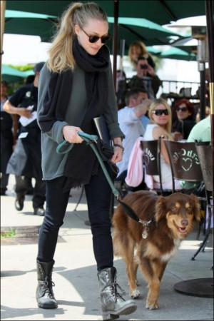 Amanda Seyfried: So captivating, so versatile