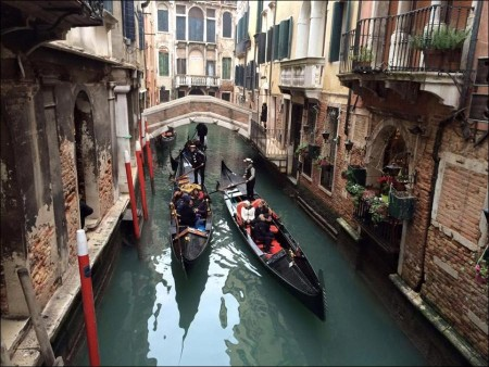 Great things to do in Venice